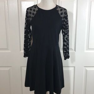 "Express little black ""twirl dress"""